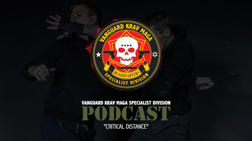 004-krav-maga-critical-distance