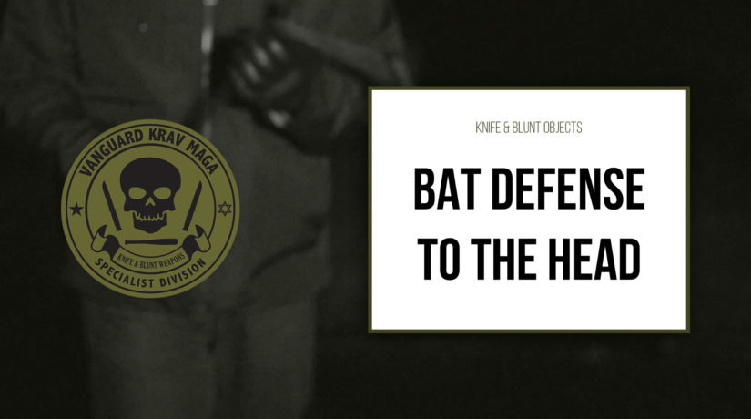 03-bat-defense-head