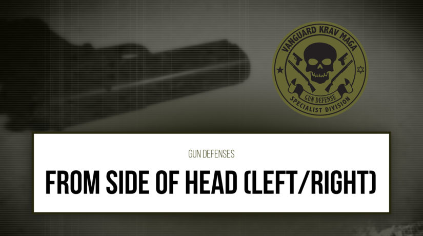 03-from-side-head-left-right