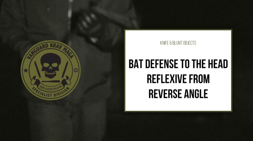 04-bat-defense-reflexive
