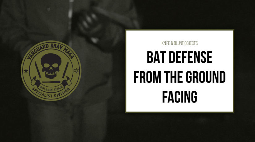 05-bat-defense-ground-facing