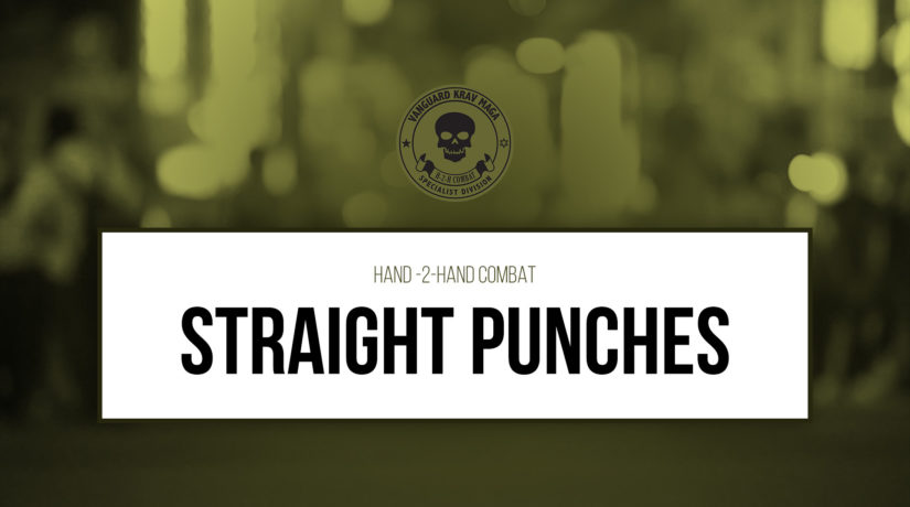 05-straight-punches