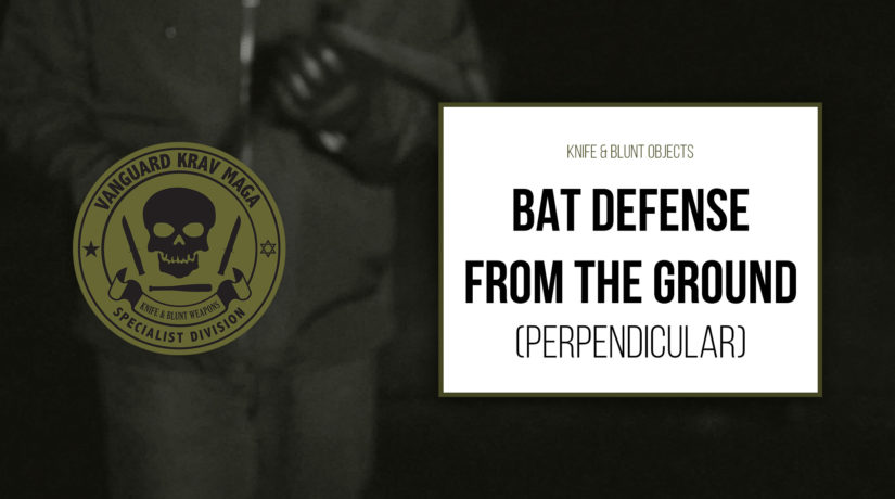 06-bat-defense-ground-perpendicular