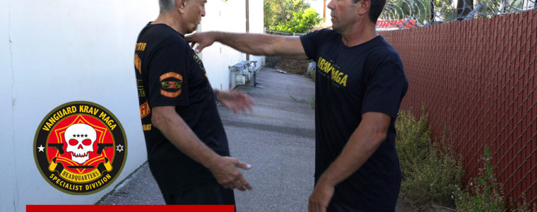 kravmaga-shoulderpush